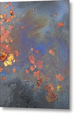 Autumn Puddle Metal Print