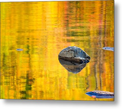 Autumn Reflected Metal Print by Joan Herwig
