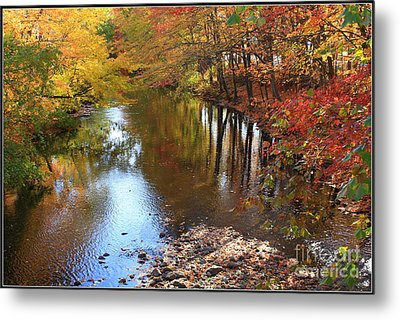 Autumn Reflection Metal Print by Dora Sofia Caputo Photographic Art and Design