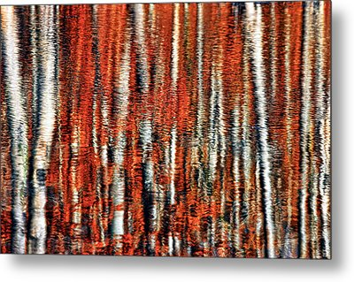 Autumn Reflection Metal Print by Marcia Colelli