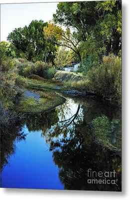 Autumn Reflection Metal Print by Nancy Marie Ricketts