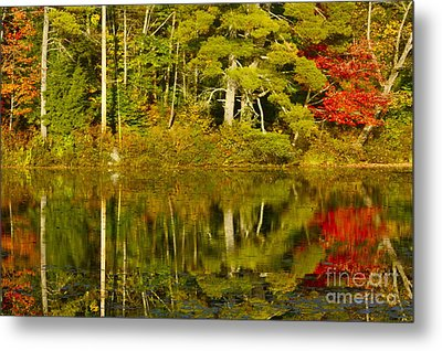 Metal Print featuring the photograph Autumn Reflections by Alice Mainville