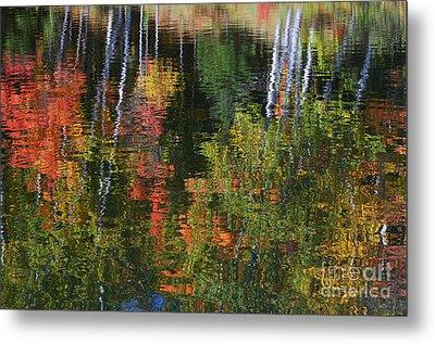 Autumn Reflections Metal Print
