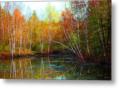 Autumn Reflections Metal Print by James Hammen