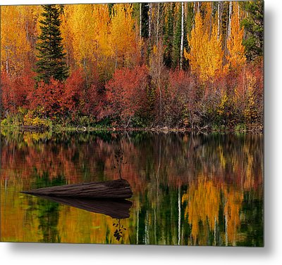 Autumn Reflections Metal Print by Leland D Howard