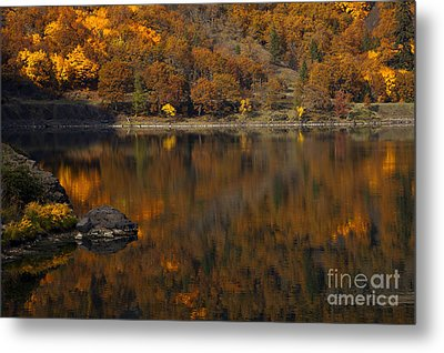 Autumn Reflections Metal Print by Mike  Dawson