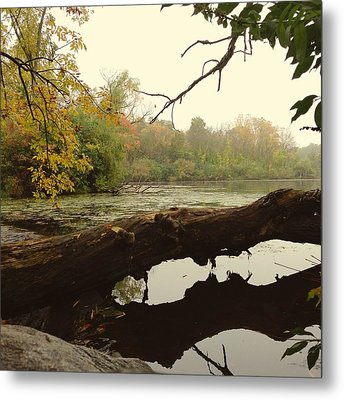 Autumn Reflections Metal Print by Nikki McInnes
