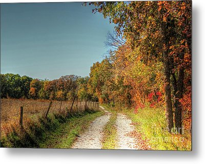 Autumn Ridge Metal Print by Thomas Danilovich