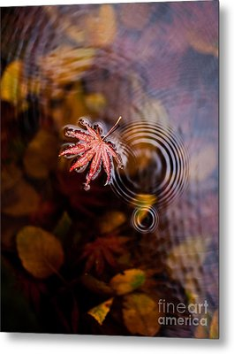 Autumn Ripples Metal Print by Mike Reid