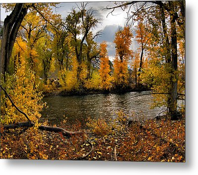 Autumn River Light Metal Print