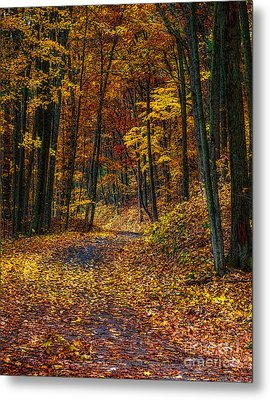 Autumn Roadway Reclamation Metal Print