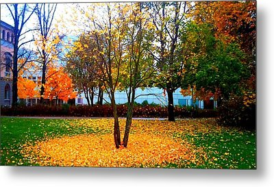 Autumn Series 1.1 Metal Print