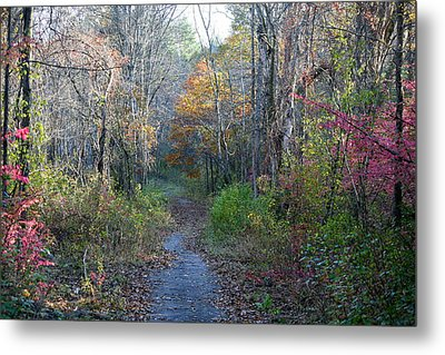 Autumn Silence No.2 Metal Print