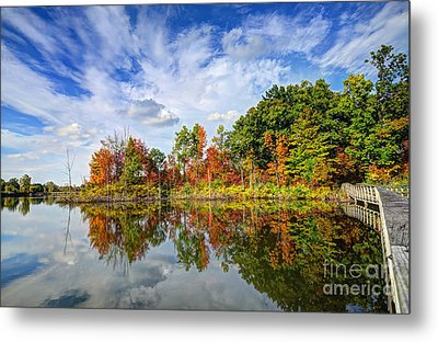 Autumn Sky Metal Print by Rodney Campbell