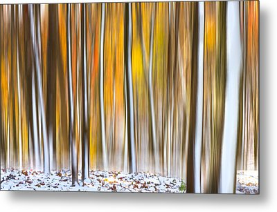 Metal Print featuring the photograph Autumn Snow Dream by Carl Amoth