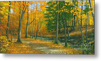 Metal Print featuring the painting Sawmill Creek by Michael Swanson
