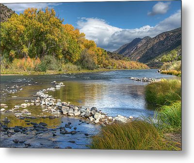 Autumn Stance Metal Print by Britt Runyon