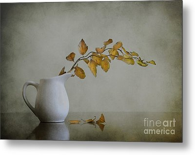 Autumn Still Life Metal Print by Diana Kraleva