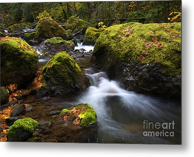 Autumn Stones Metal Print by Mike Dawson