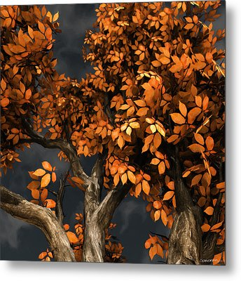 Autumn Storm Metal Print by Cynthia Decker