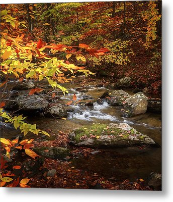 Autumn Stream Square Metal Print by Bill Wakeley