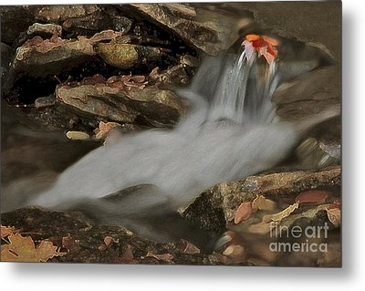 Autumn Stream Metal Print by Susan Candelario