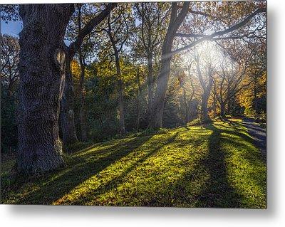 Autumn Stroll V2 Metal Print by Ian Mitchell