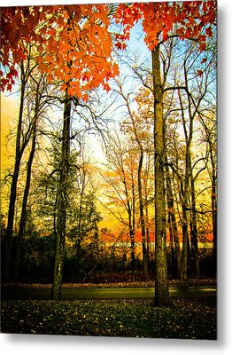 Autumn Sunset  Metal Print by Sara Frank