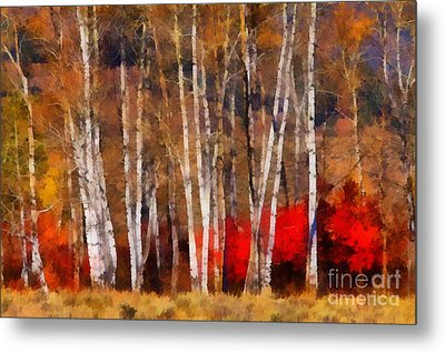 Autumn Tapestry Metal Print by Clare VanderVeen