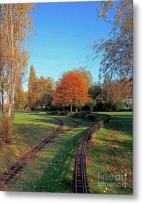 Autumn Tracks Metal Print by Terri Waters