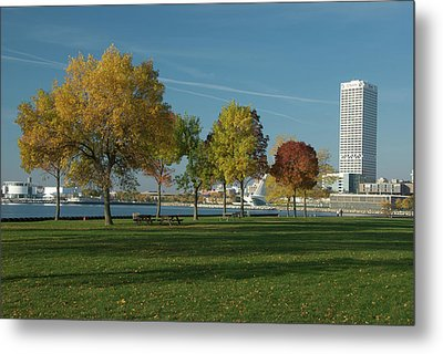 Metal Print featuring the photograph Autumn Trees by Jonah  Anderson