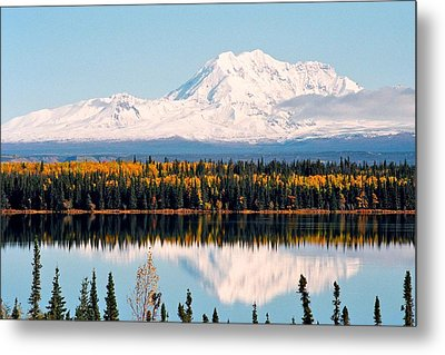 Autumn View Of Mt. Drum - Alaska Metal Print by Juergen Weiss