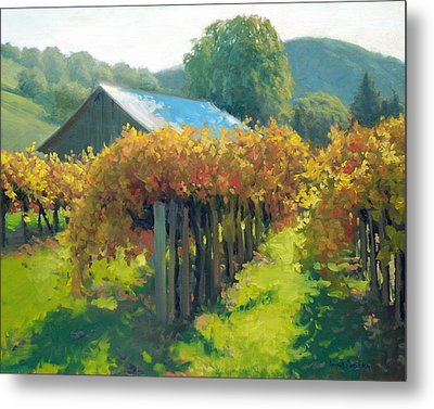 Autumn Vineyards Metal Print