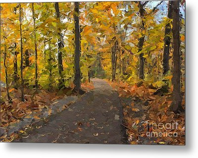 Autumn Walk Metal Print by Robin Konarz