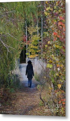 Metal Print featuring the photograph Autumn Walk by Tannis  Baldwin