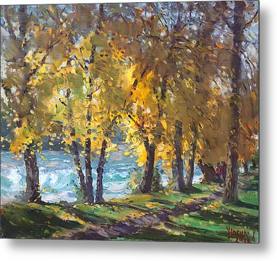 Autumn Walk Metal Print by Ylli Haruni
