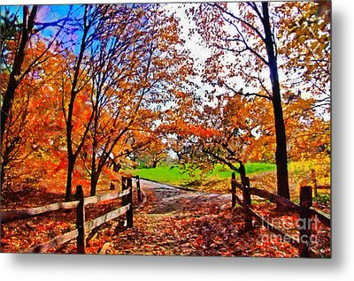 Autumn Walkway Metal Print by Nishanth Gopinathan