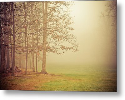 Autumn Whisper Metal Print by Olivia StClaire