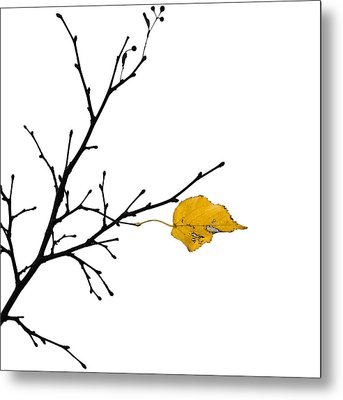 Autumn Winds - Featured 3 Metal Print by Alexander Senin