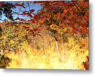 Autumnal Fire Metal Print by James Hammen