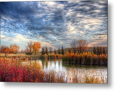 Autumnal Morn Metal Print by Larry Trupp