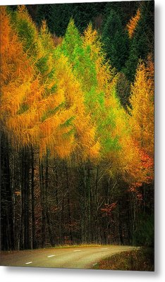 Metal Print featuring the photograph Autumnal Road by Maciej Markiewicz