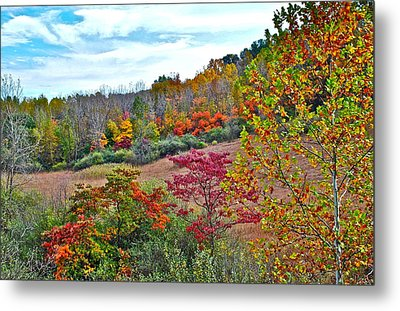 Autumnal Vista Metal Print by Frozen in Time Fine Art Photography
