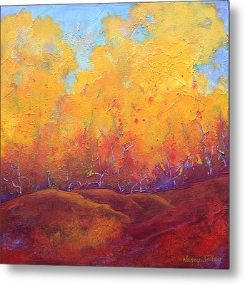 Autumn's Blaze Metal Print by Nancy Jolley