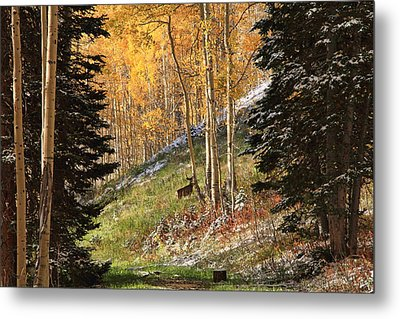Autumn's Blessing Metal Print by Gene Praag