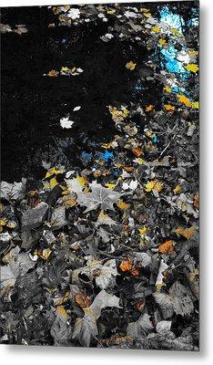 Autumn's Last Color Metal Print by Photographic Arts And Design Studio
