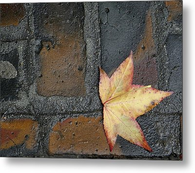 Autumn's Leaf Metal Print by Sherry Dee Flaker