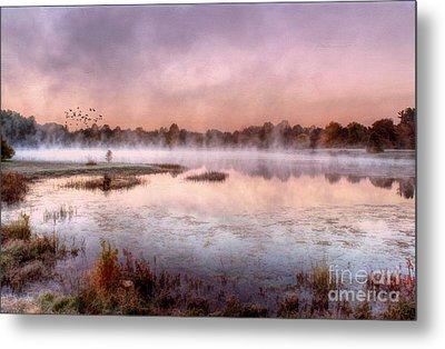 Autumns Light Metal Print by Darren Fisher
