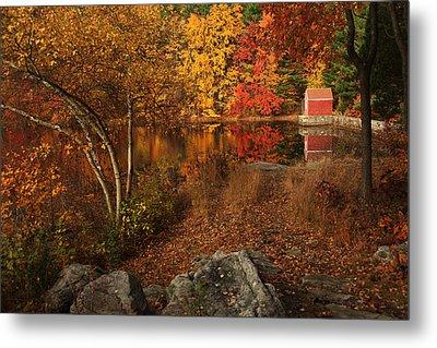 Autumns Path Metal Print by Karol Livote