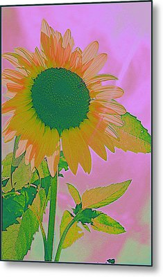 Autumn's Sunflower Pop Art Metal Print by Dora Sofia Caputo Photographic Art and Design